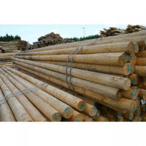 Lei- paal tbv lei-frame 4,00 meter, doorsnee 10 cm